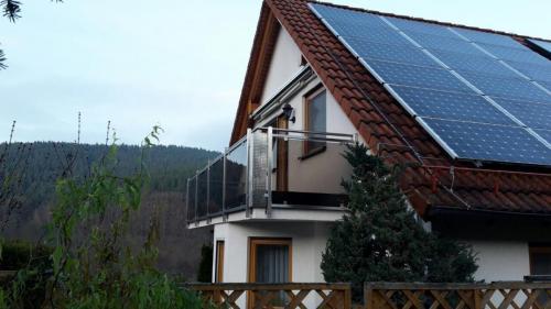Balkonbrüstung Edelstahl Bronzeglas Lochblech RB