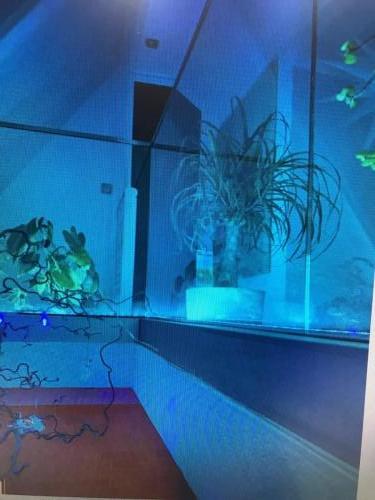 freistehende Glasbrüstung Galerie